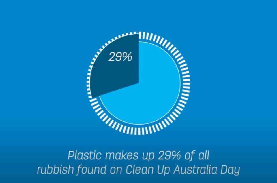 Plasticlitterproblem